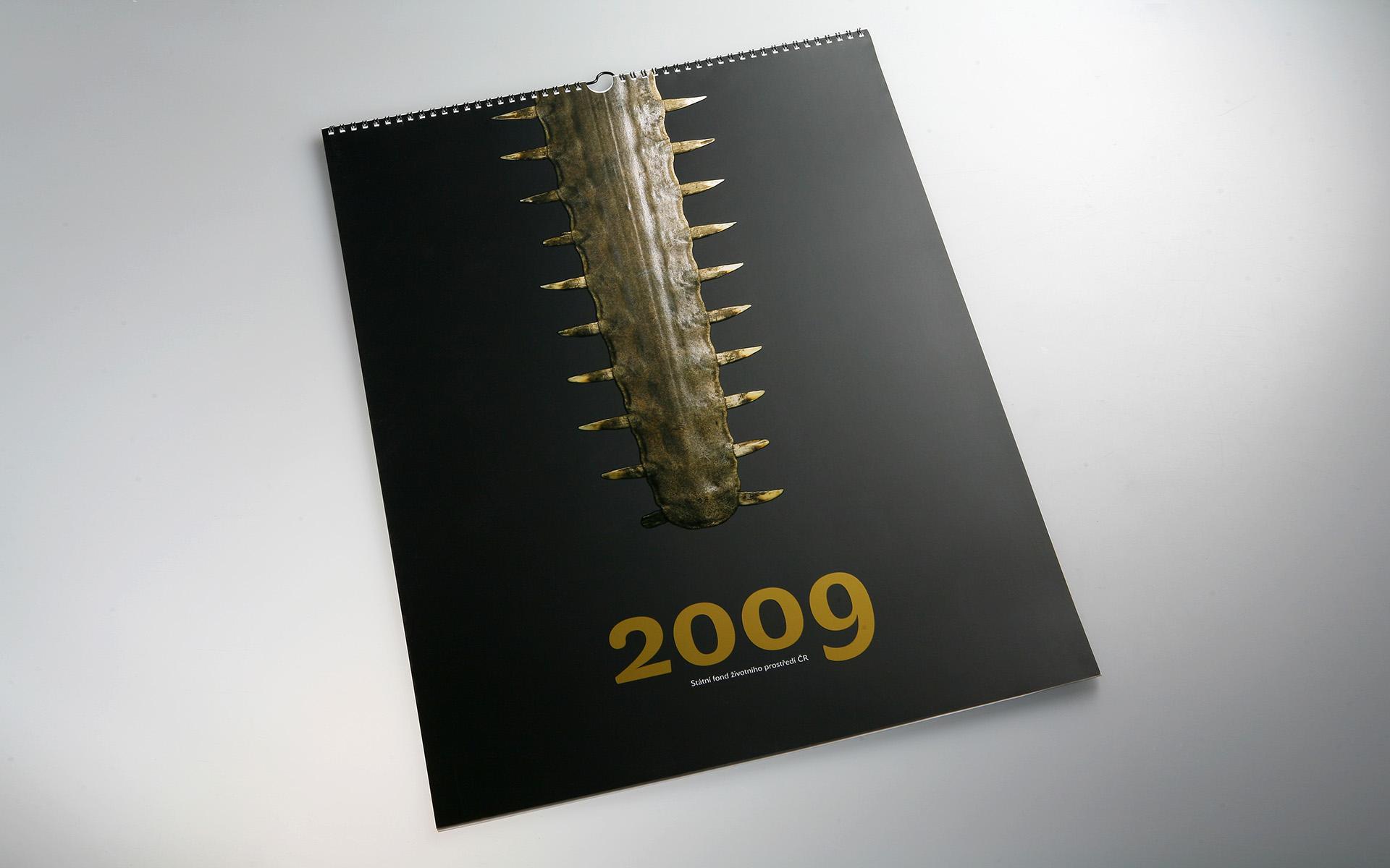2009-SFZP-kalendar-MG_0471