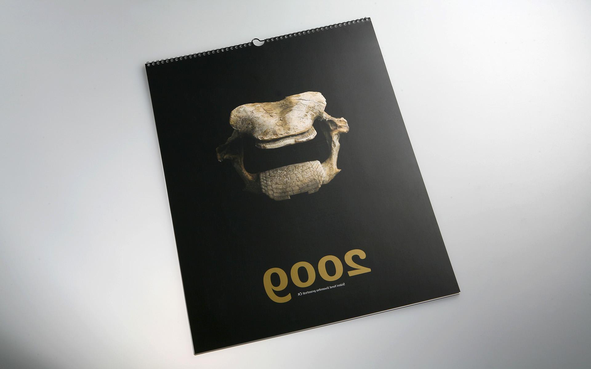 2009-SFZP-kalendar-MG_0476