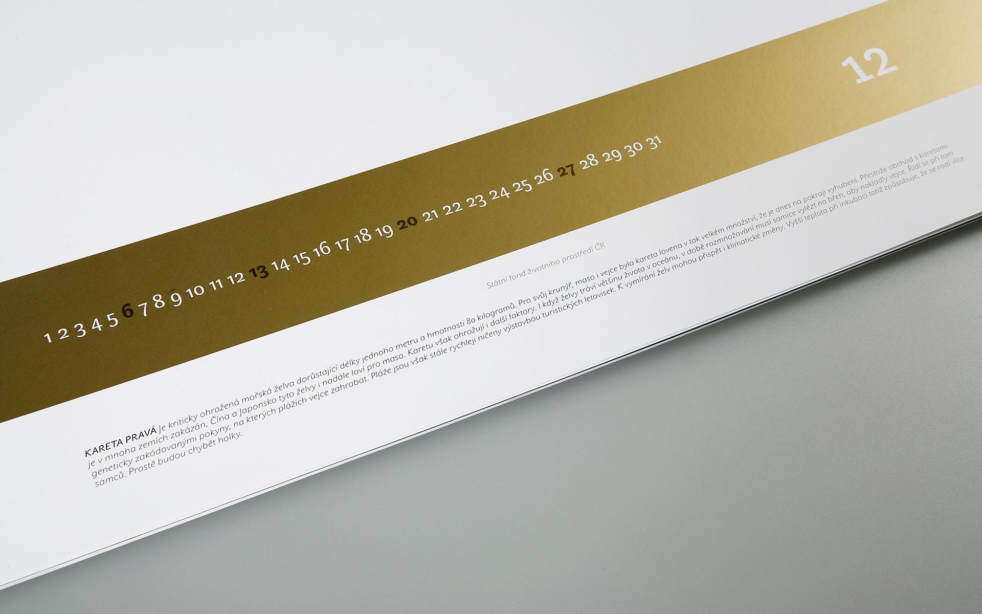2009-SFZP-kalendar-MG_0530